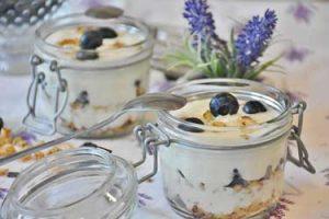 yogurt-kefir-ferment